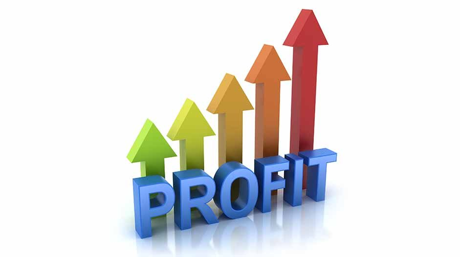 How to make profit in